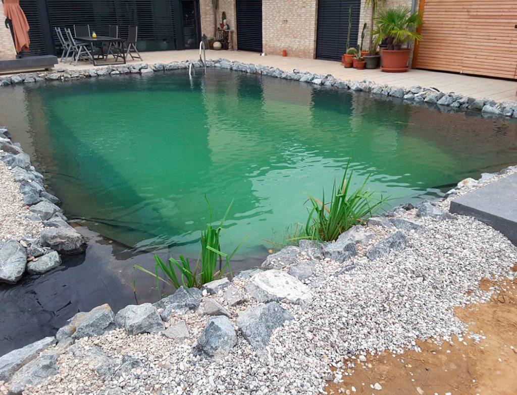 Schwimmteichbau in Gehrden nach der Fertigstellung